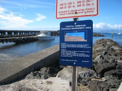 Signs are posted along areas protected in the Kahekili Herbivore Management Area. File photo courtesy Division of Aquatic Resources.