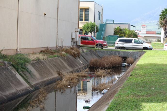Ditch along Hoʻohana Street in Kahului. Photo by Wendy Osher.