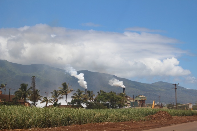 The Puʻunēnē Sugar Mill seen from Hansen Road Photo by Wendy Osher.