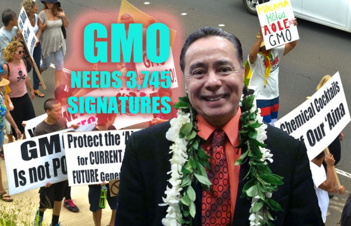 County Clerk Danny Mateo says the SHAKA Movement's GMO Petition still needs 3,745 more signatures in the next 20 days in order to be included in the November ballot. Maui Now Graphic.
