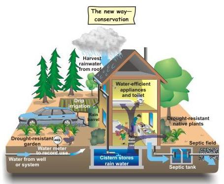 Maui Green Living Rainwater Catchment Systems Maui Now Hawaii News