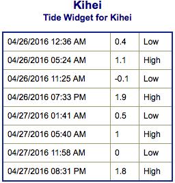 Screen Shot 2016-04-25 at 9.59.28 PM