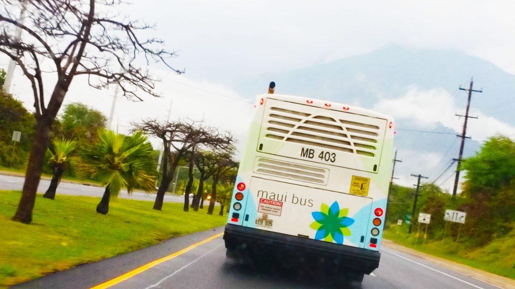 Maui Bus. Maui Now photo.