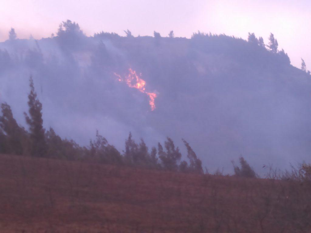 Māʻalaea fire 7.2.16. Photo credit: Mike Kahula