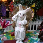 Easter Bunny Hops & Hula at Lahaina Cannery Mall