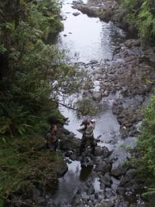 Courtesy Photo:  (Left to right) Kerri Fay and Pat Bily, Wailua Iki. © Hank Oppenheimer/Plant Extinction Prevention Program