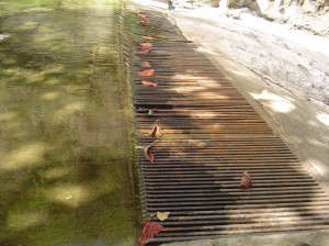 This grate above the Kepaniwai Heritage Park is a source of contention as the Commission on Water Resource Management tries to determine the current use of old sugar company diversions. Photo by Wendy OSHER © 2009