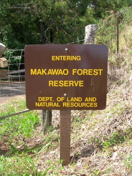 Search for Missing Hiker Underway at Makawao Forest Reserve