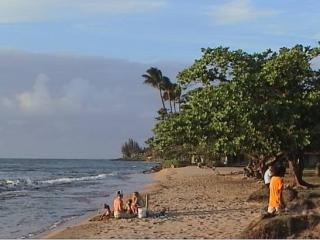 Honokowai Park image courtesy County of Maui.
