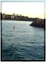 File Photo of Maalaea Harbor by Wendy Osher.