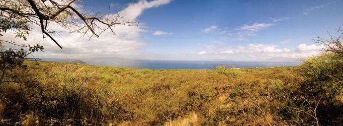 View towards the ocean from the Honua'ula property.  Site Photograph Courtesy: Honua'ula Partners, LLC, and PBR Hawaii & Associates Inc.