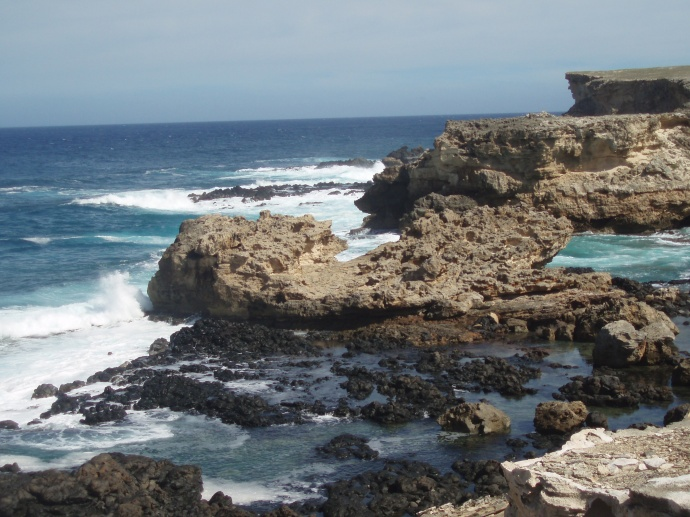 Limestone shelves and cliffs and tidepools at 'Ilio Point.  Photo Courtesy Hawaii DLNR.