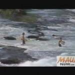 Hookipa Surf Classic File Image.
