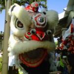 Hawaii Secrets Revealed to the Chinese… Revealed