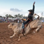 'Ohana Ranch Rodeo. Photo courtesy of Upcountry Fair Maui.