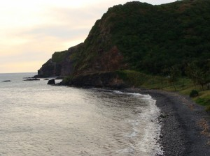 Kīpahulu coastline, file photo by Wendy Osher.