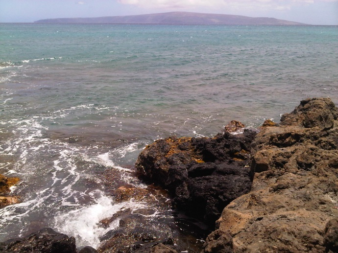 Maui near shore waters, file photo by Wendy Osher.