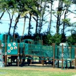 Unsafe Conditions Force Closure of Hui Aloha Playground