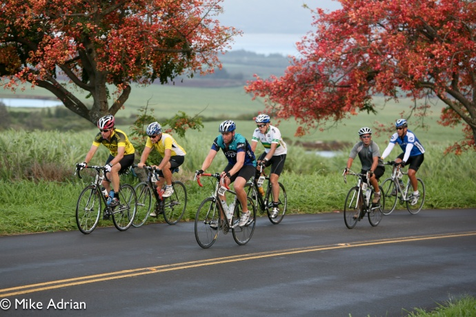 US Sen. Schatz Introduces Bill To Make Streets Safer for Pedestrians, Cyclists