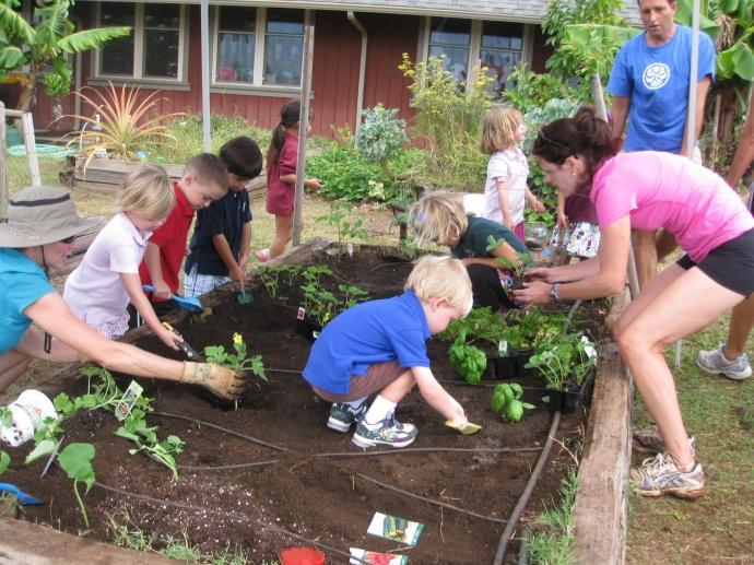 Maui now letter keiki wisdom for Gardening with children