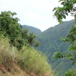 Waihe'e Valley, file photo by Wendy Osher.