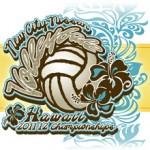 Kamehameha-Maui Reaches State D-I Semis