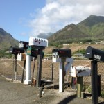 Maui mailboxes. File photo by Wendy Osher