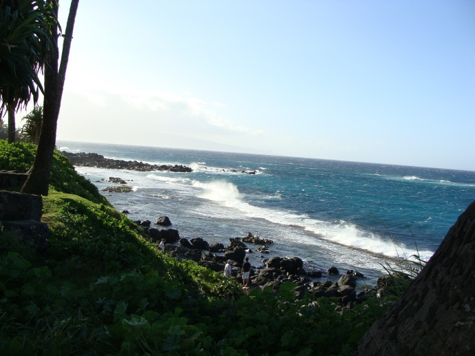 Maui's north shore. File photo by Wendy Osher.
