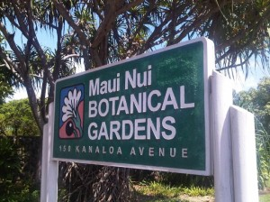 Maui Nui Botanical Gardens. Photo by Wendy Osher.