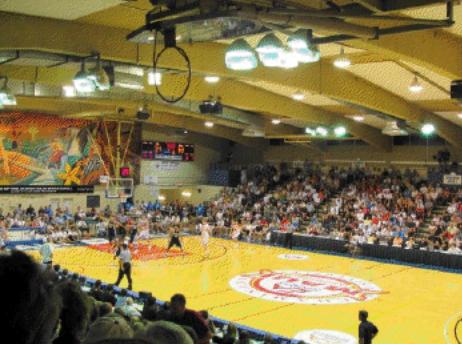 Basketball, file photo courtesy Wayne Seaman.
