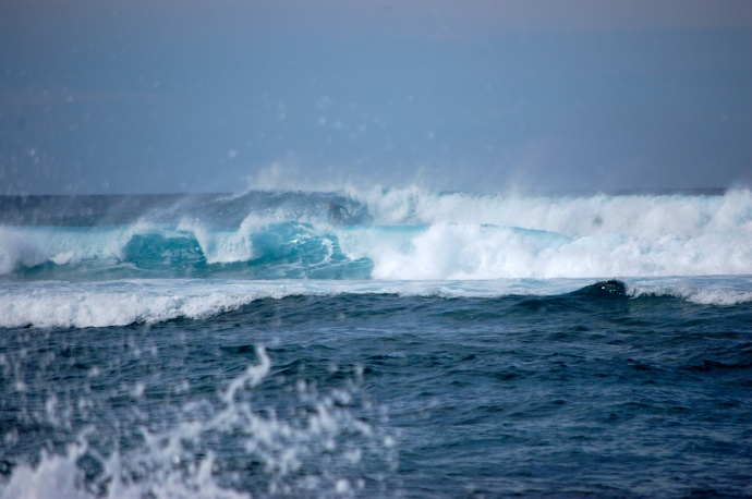 High surf at Hookipa Beach on the North Shore. Photo by Madeline Ziecker.