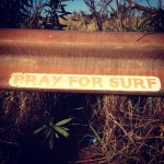 A sticker at Honolua Bay. File photo by Madeline Ziecker.