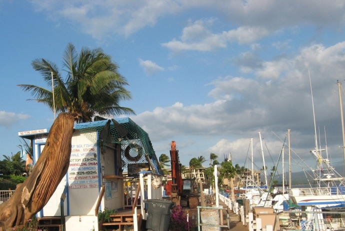 Maalaea Small Boat Harbor is among the stops planned on the site visit schedule today. Maui Now file photo.