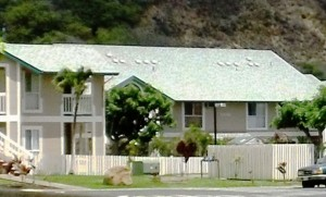 Iao Parkside. File photo by Wendy Osher.