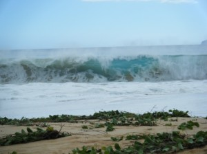huge-big-beack-makena-maui-wave