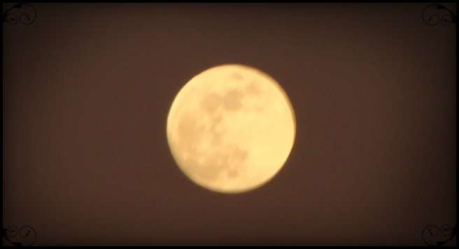 Moon. File photo by Wendy Osher.
