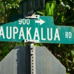Kaupakalua. File photo by Wendy Osher.