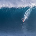 World's Best Paddle Jaws for 2 Days in a Row