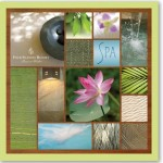 Glick Design has won the 2012 American Graphic Design Award for a spa booklet designed for the Four Season Resort Maui. Photo couresy of Glick Design.