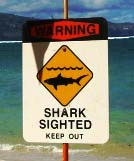Shark sign, file photo by Wendy Osher.