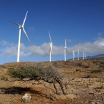19,000 Lose Power When Maui Wind Farm Trips Offline