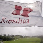 A Kapalua flag blows after Saturday's play was canceled due to high winds at the Plantation Course. Photo by Petersen/Getty Images.