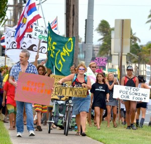Kahului, Maui - March 23, 2013, Rally against GMOs. File photo by Rodney Yap.