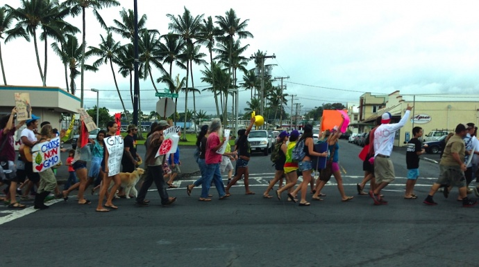 GMO protestors march along Kamehameha Avenue in Hilo the weekend prior to the bill's hearing in the Senate on 3/21/2013. Photo by Nate Gaddis.