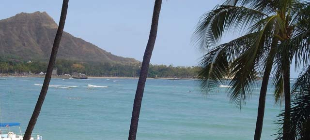 Oahu, file photo by Wendy Osher.