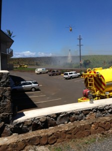 Photo courtesy: Terry Reim, Kūʻau.
