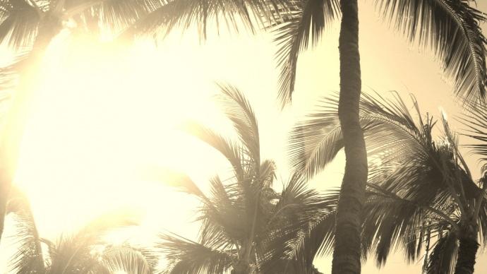 Hawaiʻi, Photo by Wendy Osher.