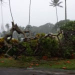 East Maui storm impacts. Photo courtesy Jo-Lei Redo.