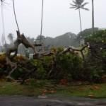 East Maui storm impacts. Photo courtesy Jo-Lei Redo.