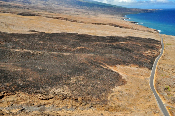 Kaupō burn area. Photo courtesy County of Maui / Ryan Piros.